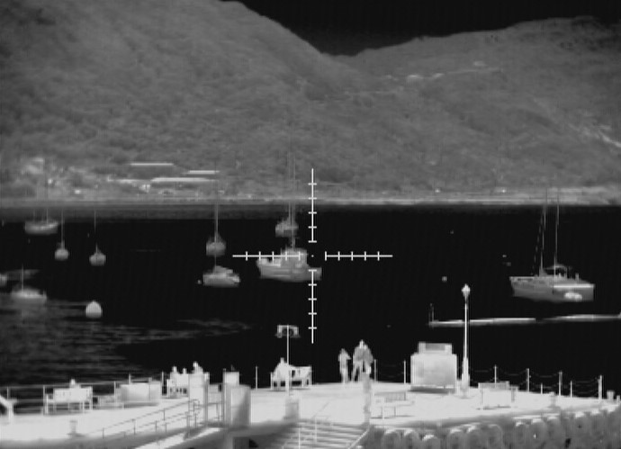 Thermal Image of Port Security