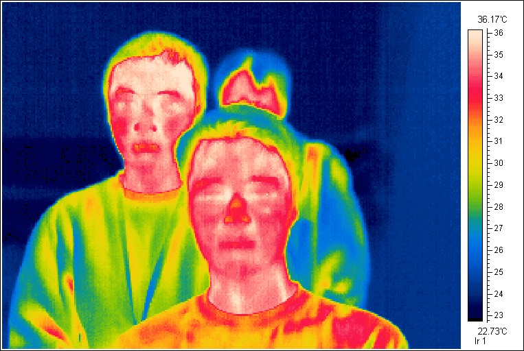 Thermal Imaging and Fever Detection